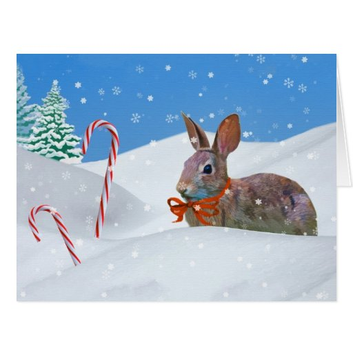 Christmas, Rabbit, Snow, Candy Canes Cards