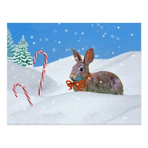 Christmas, Rabbit, Snow, Candy Canes Post Card