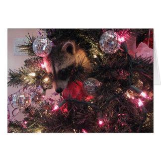 Christmas Raccoon Card