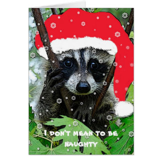 Christmas Raccoon - Greeting Card