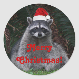 Christmas Raccoon Holiday Classic Round Sticker