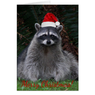 Christmas Raccoon Photo Holiday Card