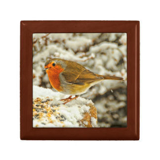 Christmas Robin in the Snow in Scotland Gift Box