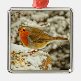 Christmas Robin in the Snow in Scotland Metal Ornament