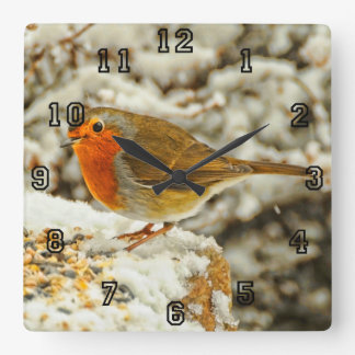 Christmas Robin in the Snow in Scotland Square Wall Clock