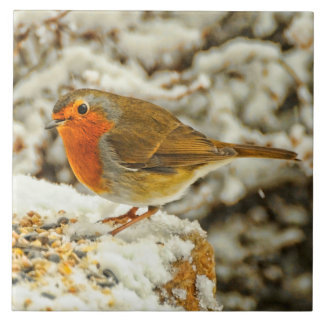 Christmas Robin in the Snow in Scotland Tile