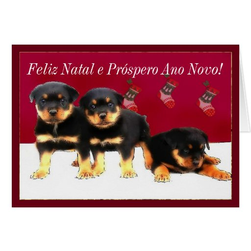 Christmas Rottweiler puppies Cards