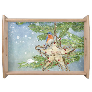 Christmas Rustic Nature Blue Bird birch Star Serving Tray