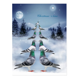 Christmas´s Time Postcard