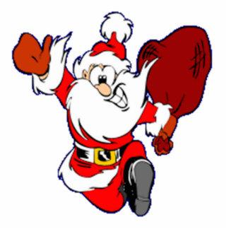 Christmas Santa Claus Photo Sculpture