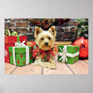 Christmas - Schnorkie - Ginny Print