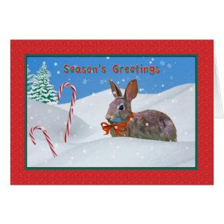 Christmas, Season's Greetings, Rabbit, Snow, Candy Greeting Card