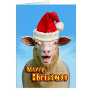Christmas Sheep Card