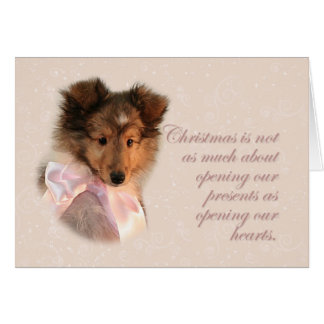 Christmas Sheltie Puppy Card