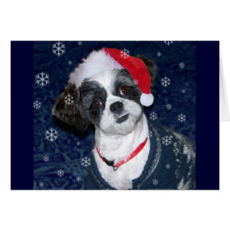Christmas Shih Tzu Dog Card