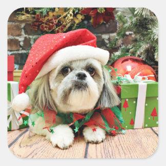 Christmas - Shih Tzu - Gizmo Square Sticker