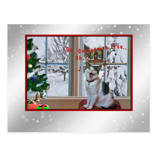 Christmas, Singing Cat, Snow, Postcard