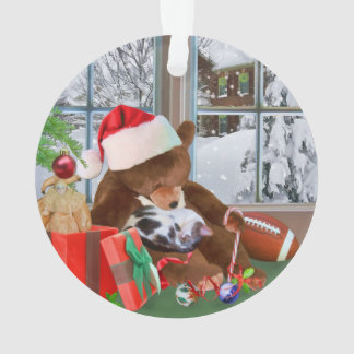 Christmas, Sleeping Cat, Teddy Bear Ornament