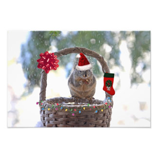 Christmas Squirrel in Snowy Basket Photo Art