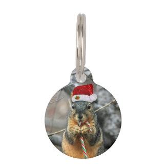 Christmas Squirrel Pet Name Tag