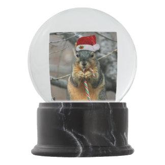 Christmas Squirrel Snow Globe