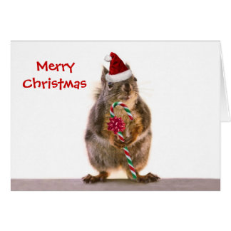 Christmas Squirrel with Candy Cane Card