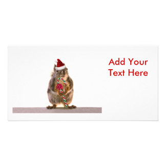 Christmas Squirrel with Candy Cane Personalized Photo Card