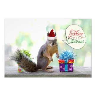 Christmas Squirrel with Christmas Presents Photo Print