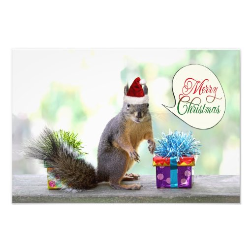 Christmas Squirrel with Christmas Presents Photo