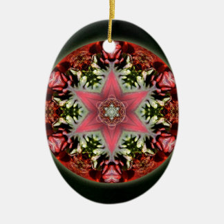 Christmas Star Ceramic Ornament