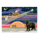 Christmas Star - Newfoundland (black 2) - Greeting Cards