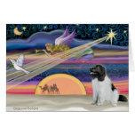 Christmas Star -  Newfoundland (Landseer) Greeting Cards