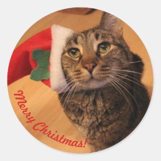 Christmas Sticker Rei