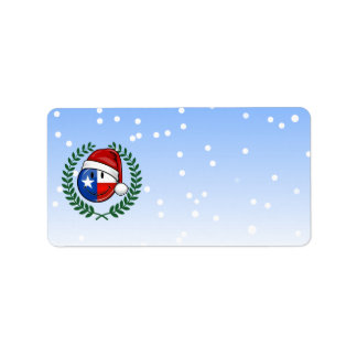 Christmas Style Smiling Texas flag Label