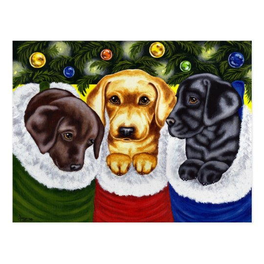 Christmas Surprise Labrador Puppies Postcard