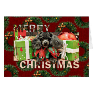 Christmas - Toy Poodle - Annie Greeting Card
