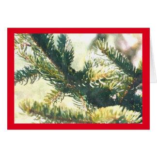 Christmas Tree Branches Christmas Card