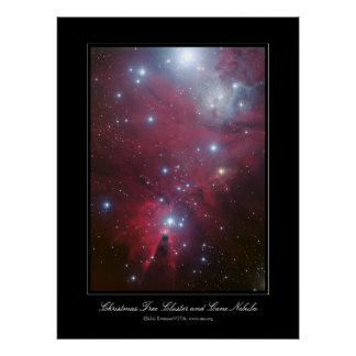 Christmas Tree Cluster and Cone Nebula Poster