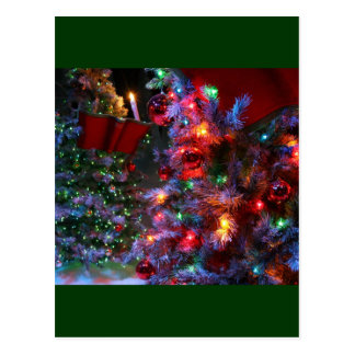 Christmas Tree in full color! Postcard