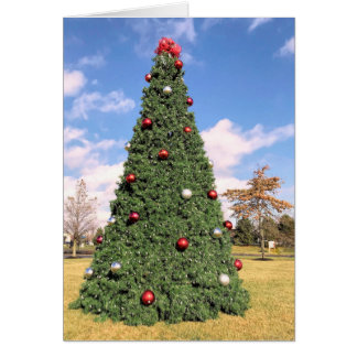 Christmas tree in Plymouth MA Card
