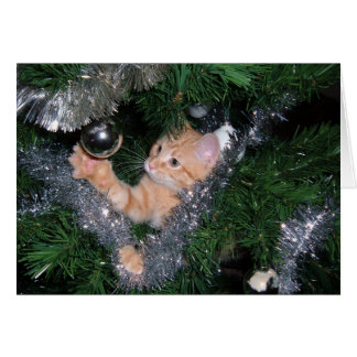 Christmas tree kitten - Customized Card