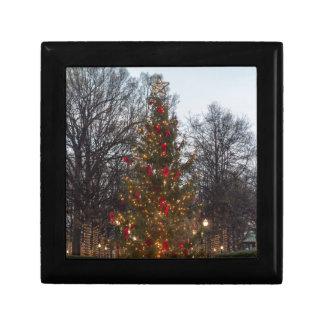 Christmas Tree Linn park Gift Box