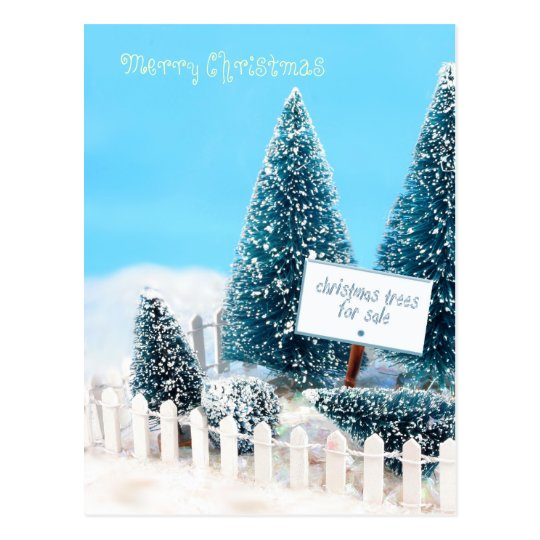 Christmas trees for sale with sign postcard