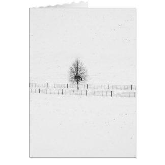 christmas trees: happy holidays greeting card