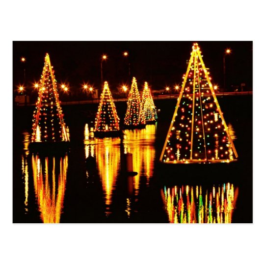 Christmas Trees In the Bay Postcard