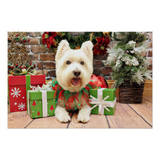 Christmas - Westie - Lucky Poster