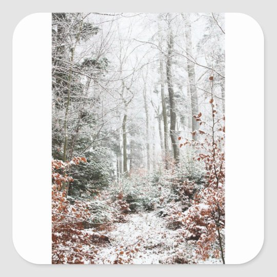 Christmas Woodland Square Sticker