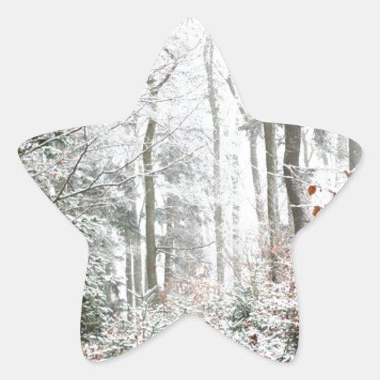 Christmas Woodland Star Sticker