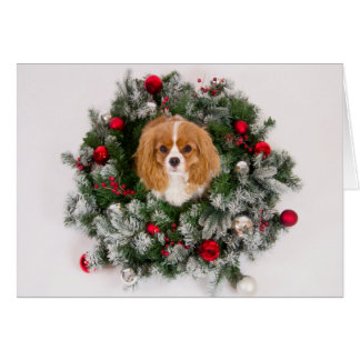 Christmas Wreath Cavalier King Charles Card