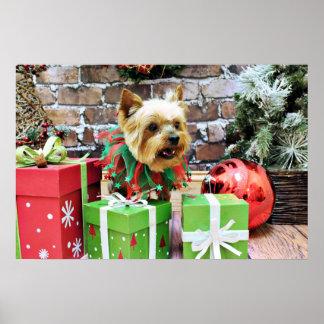Christmas - Yorkie - Willie Print